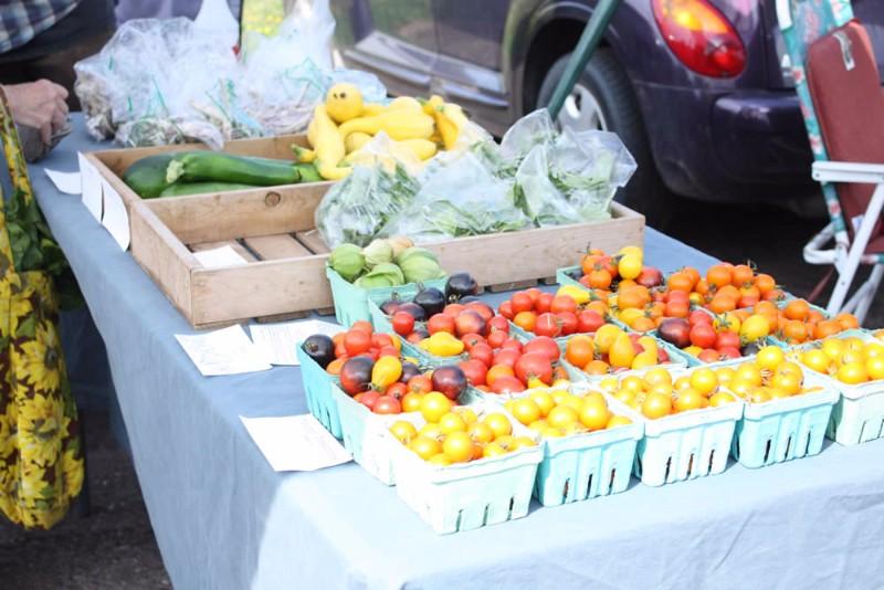 washburn_chamber_farmers_market_9