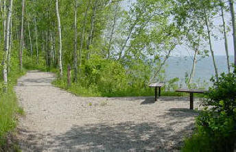 Walking-Trail-Benches