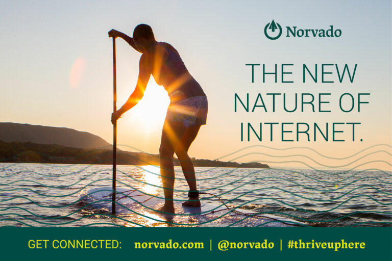 091620 Norvado New Nature of Internet 01 768x512